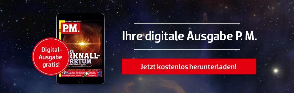 P.M. Digital